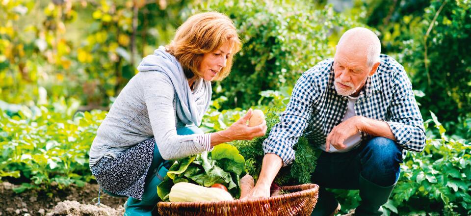 Din kost kan hjælpe kroppen til en sund aldring